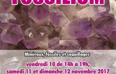fossilium-flyer