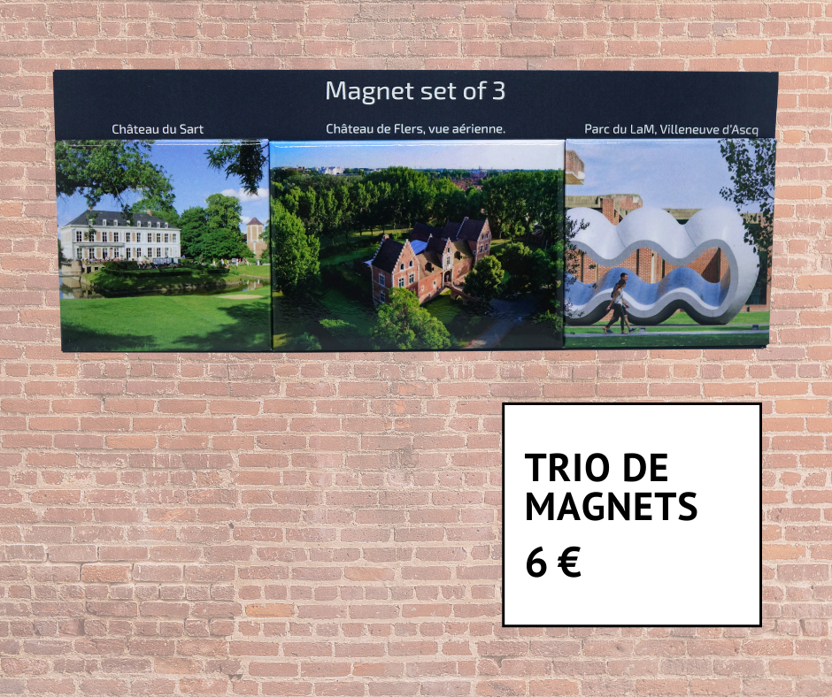Trio de magnets Villeneuve d'Ascq 6 euros