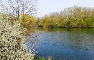 Vue du lac du Héron